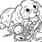 dessin de chien