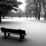 illustration de en hiver la terre pleure