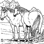 image a imprimer de chevaux
