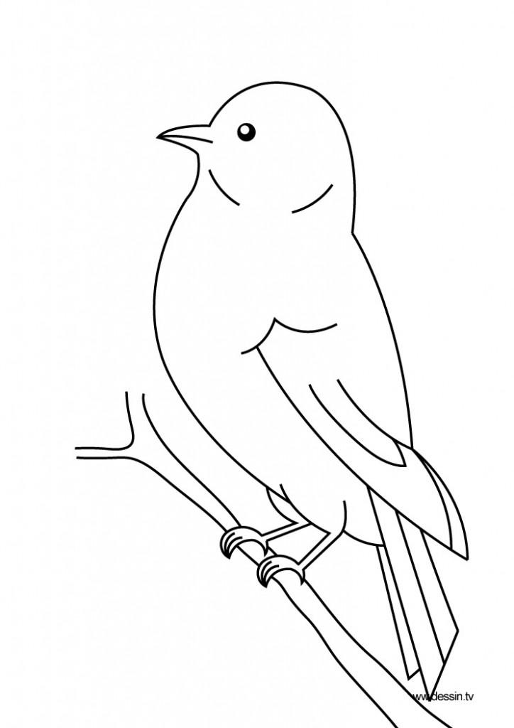 dessin de oiseau