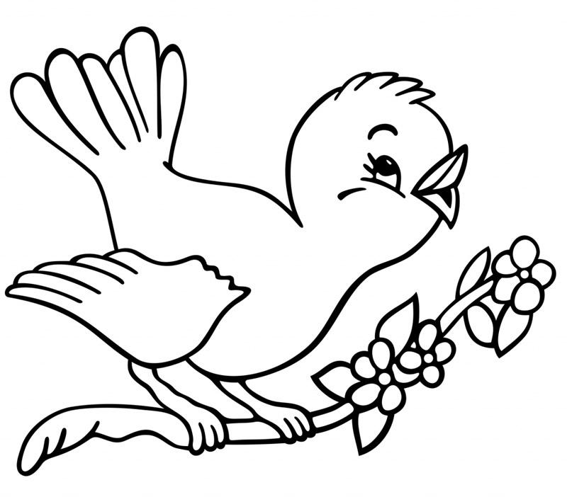Coloriage Oiseau Arbre.Dessin De Oiseau