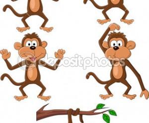 illustration de singe