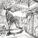 illustration encre de chine