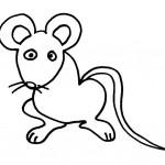 dessin de rat