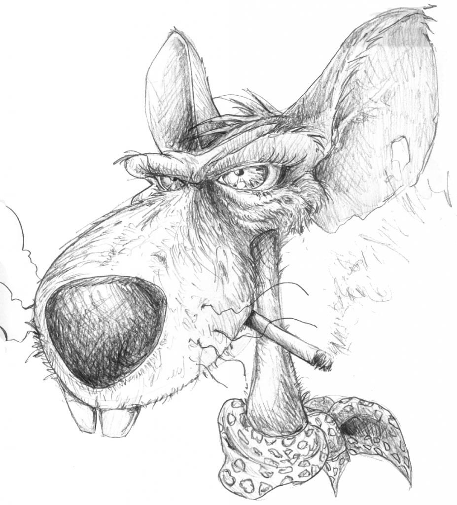 Dessin De Rat 9