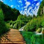 image de la nature