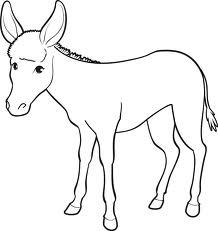 dessin de ane