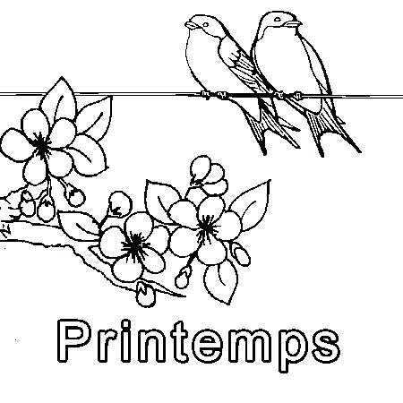 Dessin de printemps - Modele d oiseaux a dessiner ...