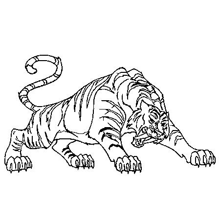 Dessin de tigre 3 - Image dessin tigre ...