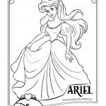 dessin d ariel