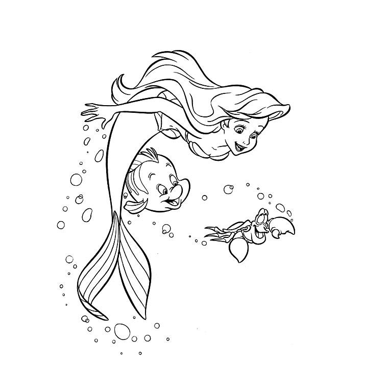 dessin d ariel (6)