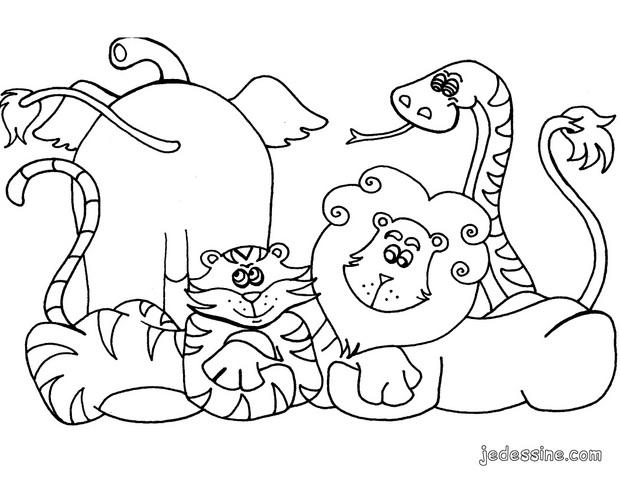 Dessin d animaux de la jungle 3 - Dessin de jungle ...