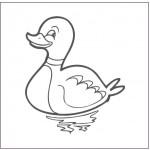 dessin de canard