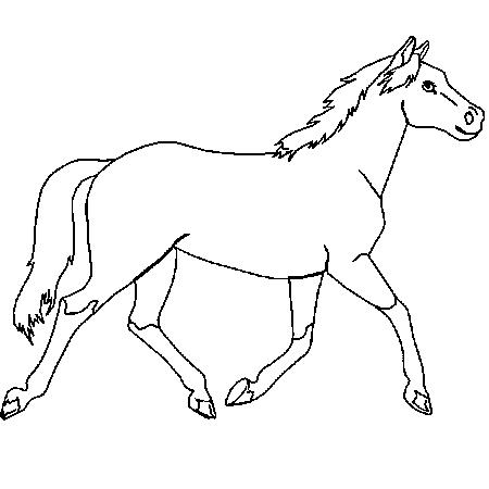 Dessin de cheval 5 - Dessin a colorier cheval ...