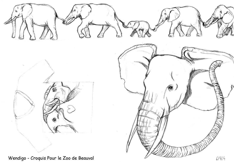 Dessin de elephant 6 - Elephant image dessin ...