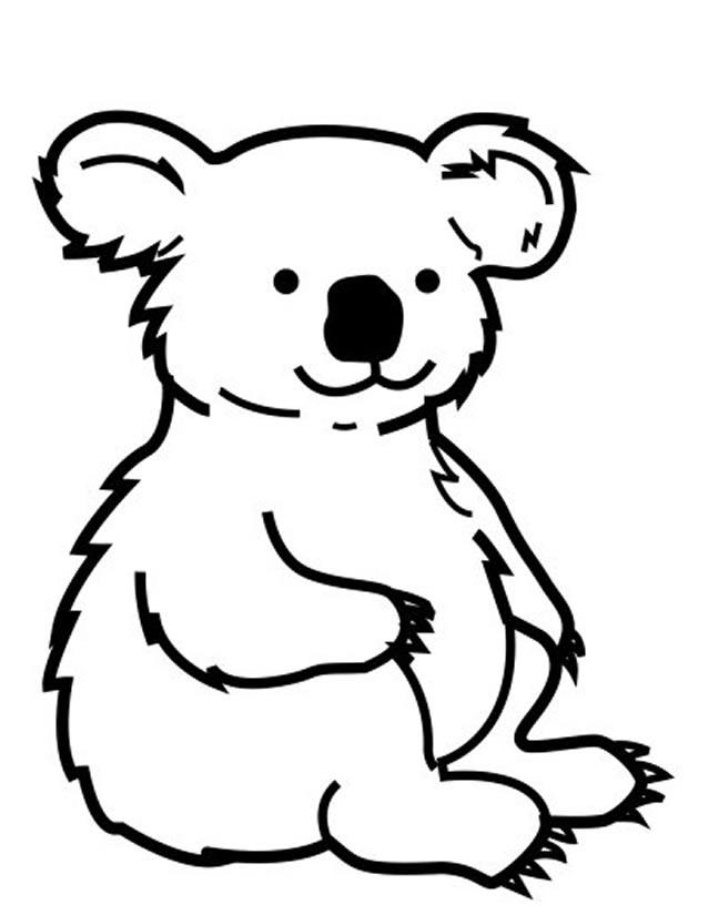 Dessin De Koala 4