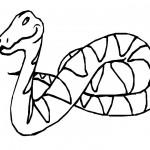 dessin de serpent