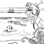 dessin de zoo