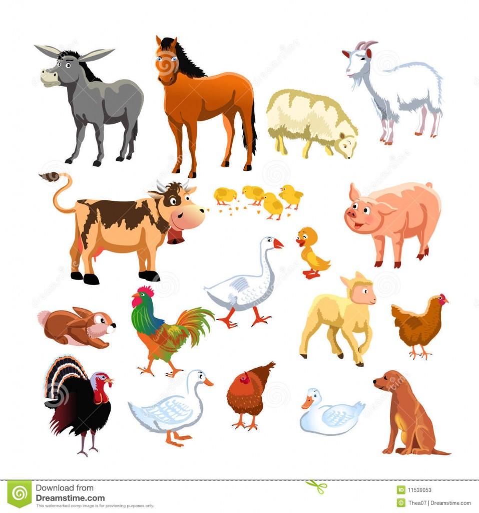 Illustration animaux de la ferme 7 - Images d animaux de la ferme ...