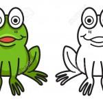 illustration de grenouille