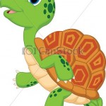 illustration de tortue