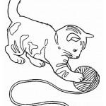 dessin de chaton