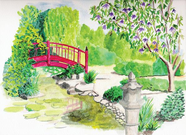 Dessin de jardin 8 for Jardin dessin