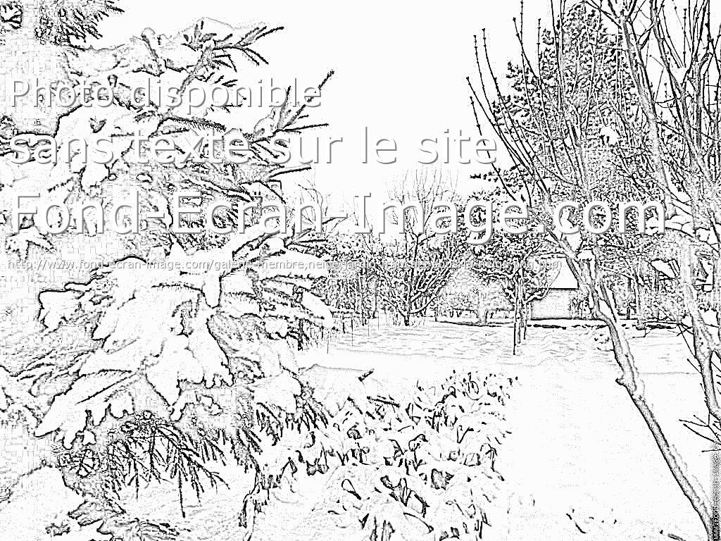 Dessin de jardin 9 for Jardin dessin