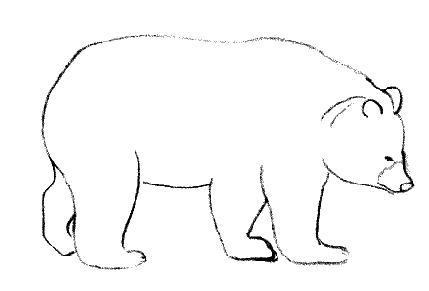 Dessin de ours - Dessin d un ours ...