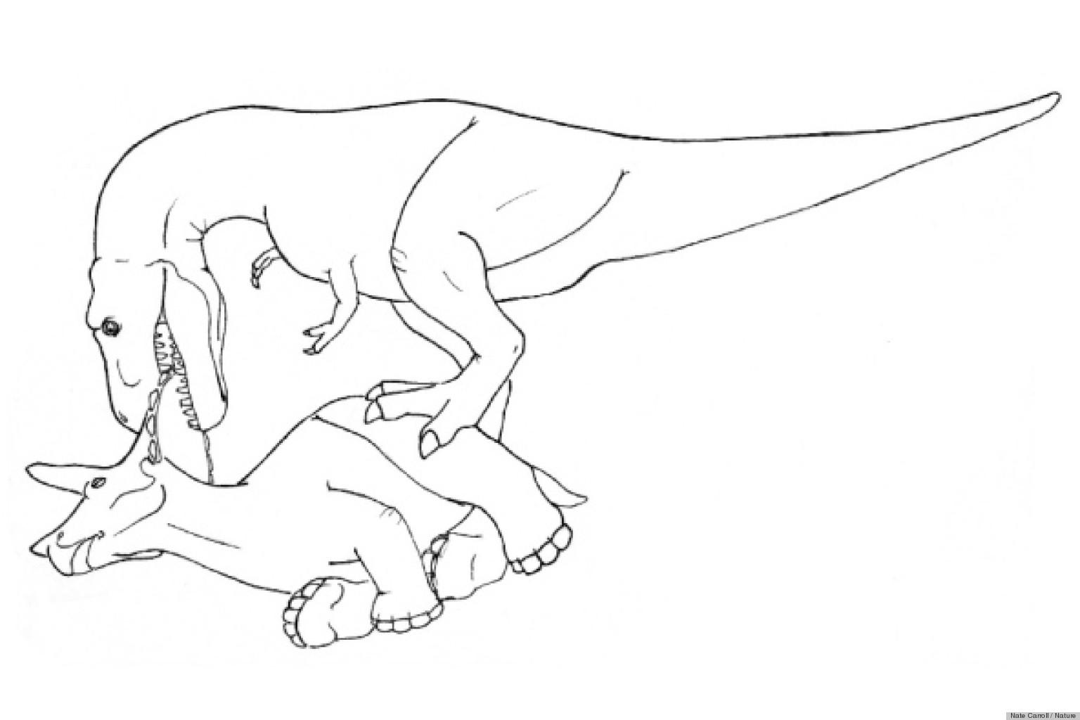Dessin de t rex 9 - Dessin dinosaure t rex ...