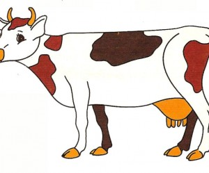 illustration de vache