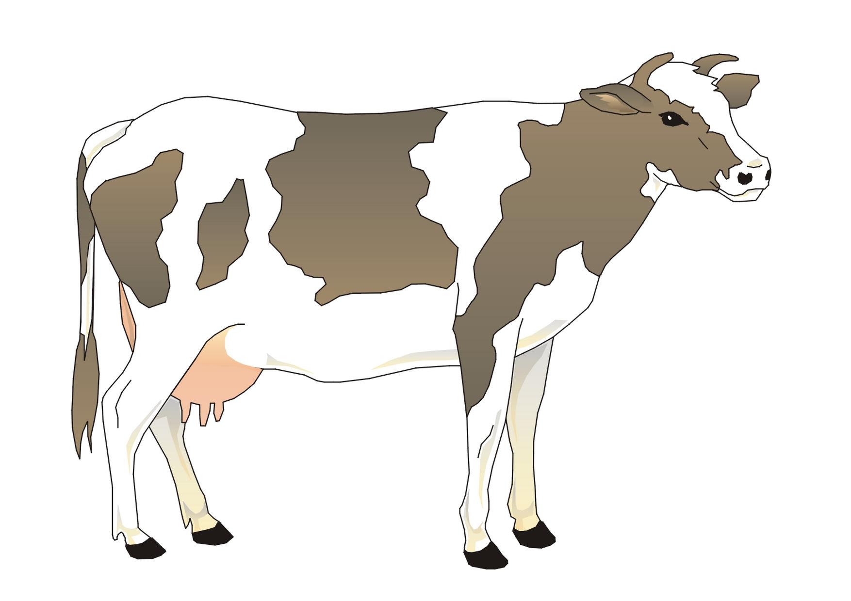 Illustration de vache 4 - Dessin d une vache ...