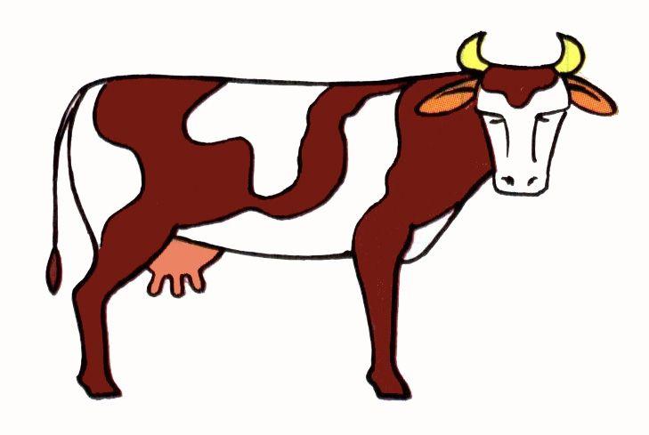 Illustration De Vache 8