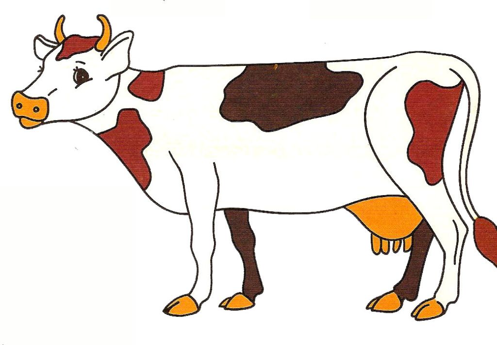 Illustration de vache - Dessin de vache ...