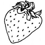 dessin de fraise