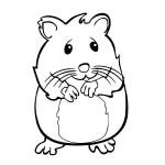 dessin de hamster