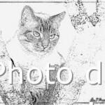 dessin de indila a imprimer