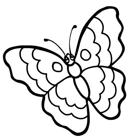 Dessin de papillon 8 - Dessiner un papillon ...