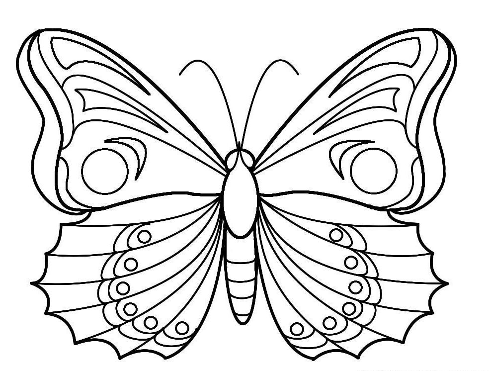 dessin de papillon (9)