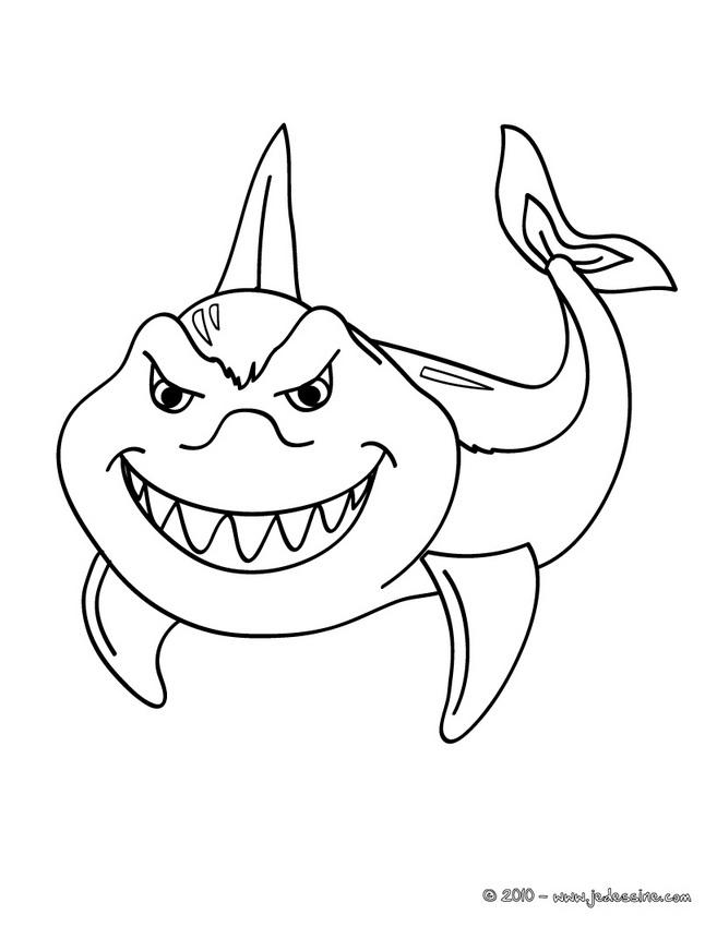 Dessin de requin 5 - Modele dessin requin ...