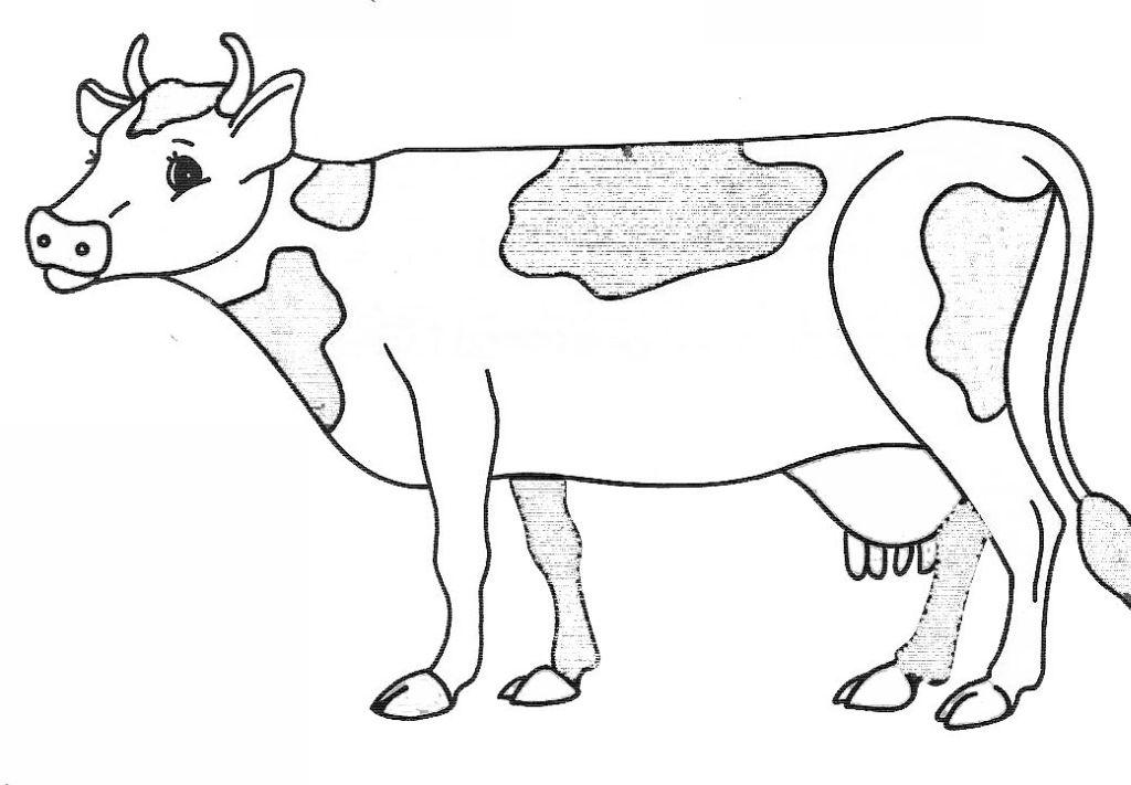 Dessin de vache 4 - Vache dessin facile ...