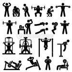 illustration d exercice de musculation