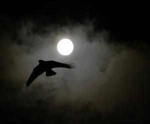 image de nuit